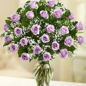 2 Dozen Purple Roses